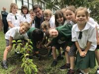 Holland's Orchard Pear Tree Cutting Presentation at Frenchs Forest Public School